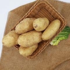 土豆(大白花)  规格200g以上   1KG