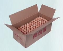 百年路通   纸箱   20公斤