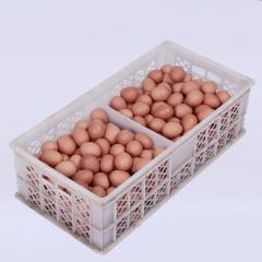 百年路通 筐装 15公斤/筐(净重)
