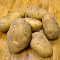 新土豆(白心) 規格200g以上 1KG