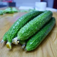 黃瓜 規格200g以上 1KG