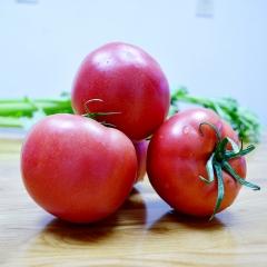 西红柿 规格100g以上 1KG