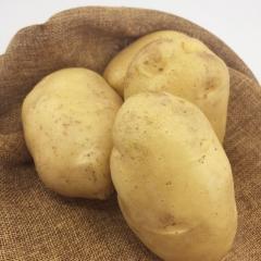 土豆(白心) 规格150g以上 1KG