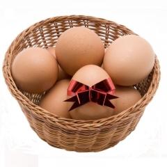 川达筐装鲜鸡蛋22.5kg/筐