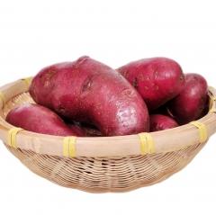 土豆(辣木彩薯) 100g以上 1KG
