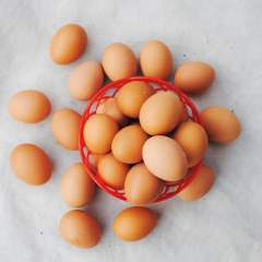 聚福天地 筐装 鸡蛋22.5kg(净重)