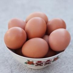 金利兴鲜鸡蛋,框装22.5kg/框(净重)