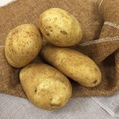 新土豆(白心)