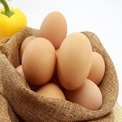 筐装鲜鸡蛋22.5kg/筐