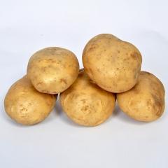 云南新土豆(大) 200g以上 1KG