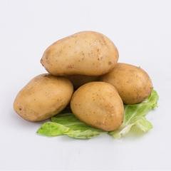 土豆(荷兰十五)150G以上  1KG