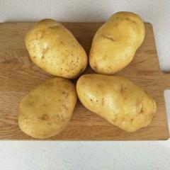 新土豆白心  200g以上