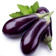 长茄200g以上   1kg