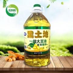 黑土地非转基因大豆油10L*2桶/箱