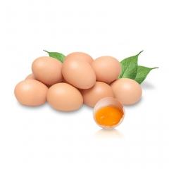 (望都鑫泰)鸡蛋、筐装22.5KG