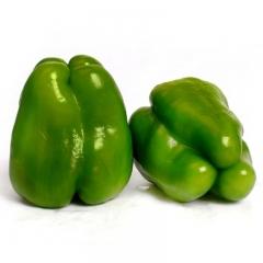 辣椒(青椒) 规格50g以上 1KG