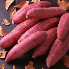 红薯250克以上