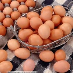 朝阳勤得利鸡蛋  22.5KG/筐