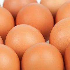 誠凱成鮮雞蛋 箱裝 20kg/箱