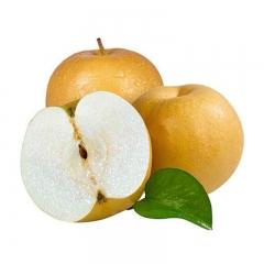 冰糖秋月梨