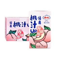 摩奇 經典 桃汁 果汁果味飲料 250ml*24盒