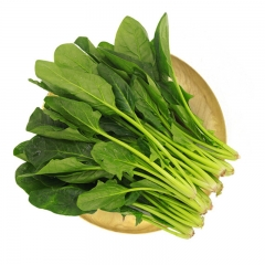 菠菜 1KG