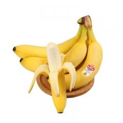 佳农进口香蕉 1KG