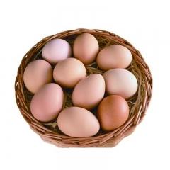 华都峪口褐壳鸡蛋筐装22.5kg/筐