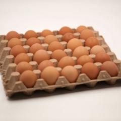 【北京绿都】 鸡蛋 箱装 15KG(净重)