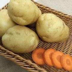 土豆(荷兰十五)   规格150g以上    1KG