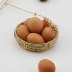 金茗园鸡蛋 箱装 20KG(净重)