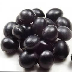 黑豆(新)
