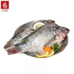 罗非鱼  2.5kg/箱(志诚)