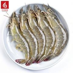 大虾    20kg/箱