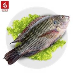 二去罗非鱼   2.5kg/箱(志诚)