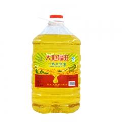 大地福旺 一级大豆油 20L
