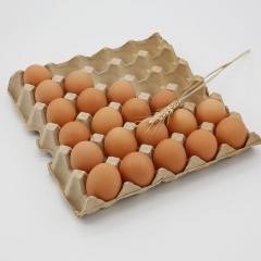 石板梁鲜鸡蛋    箱装  21.5kg/箱(净重)