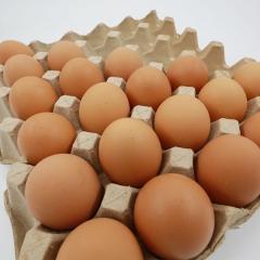 石板梁鲜鸡蛋 箱装 20kg/箱(净重)