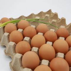 石板梁鲜鸡蛋 箱装 22kg/箱(净重)